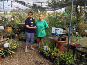 Weston Gardens in Bloom: Member Nancy Lane with Peggy