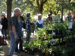 Plant sale 10.2016 shoppers 2